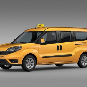 taxi-bagazowe-1